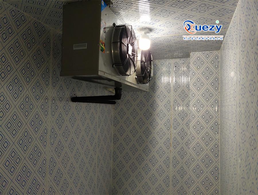 汉阳冷库安装案例